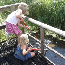 Pond dipping at Magor Marsh