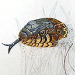 Grass snake progress 4