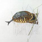 Grass snake progress 5
