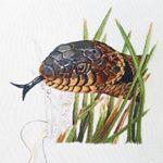 Grass snake progress 6