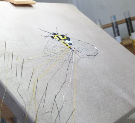 Magpie moth in progress