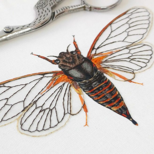 Victoria-Matthewson-embroidery-artist-moth-embroidery-1170x1170